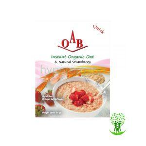 جو دو سر پرک ارگانیک صبحانه و توت فرنگی خشک OAB