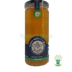 عسل-آویشن-ارگانیک-600-گرم-هاکان
