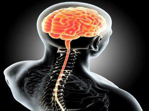 11 بیماری شایع سیستم عصبی